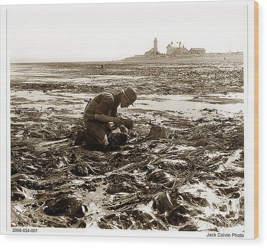 Ed Ricketts At Point Wilson Lighthouse In Port Townsend Wa July 1930 Wood Print