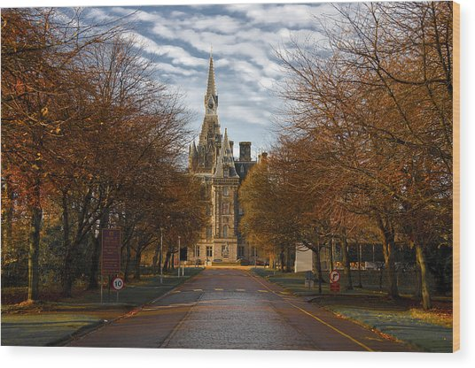 Edinburgh's Fettes College Wood Print