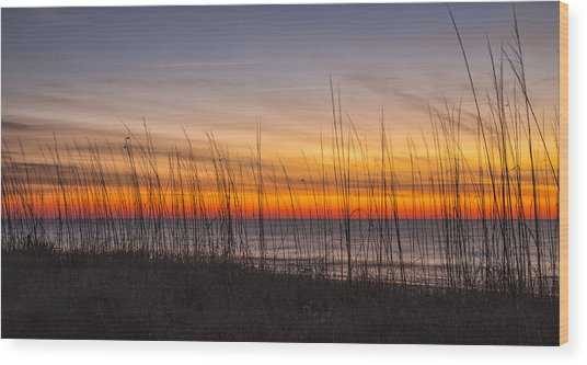 Edisto Beach Sunrise 02 Wood Print