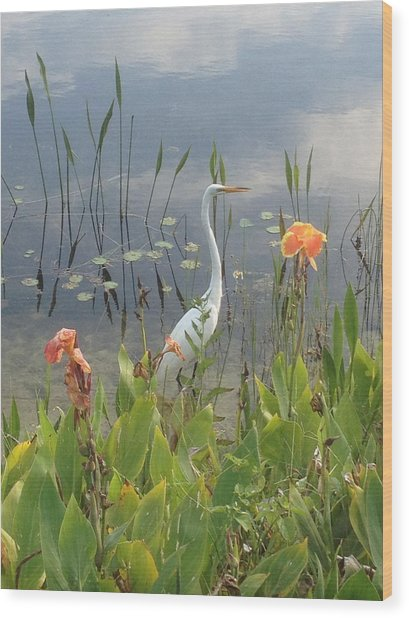 Egret And Iris Wood Print