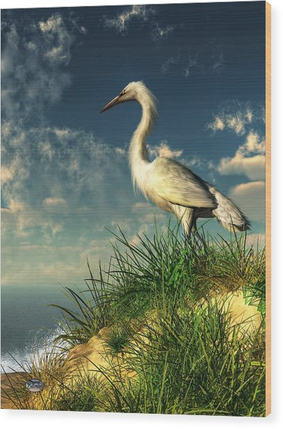 Egret In The Dunes Wood Print