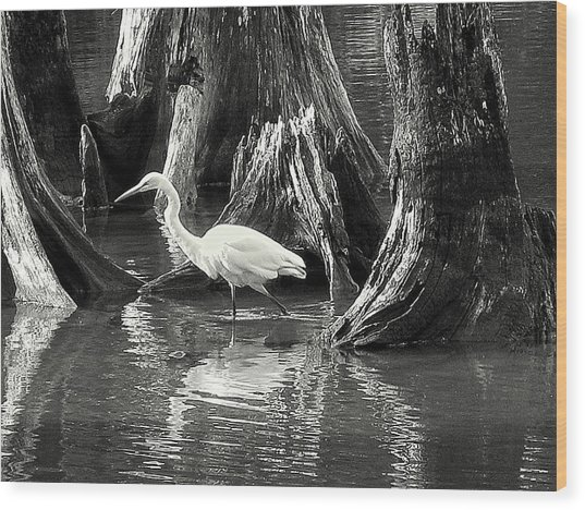 Egret Solitude Wood Print
