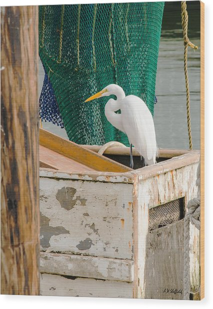 Egret With Fishing Net Wood Print