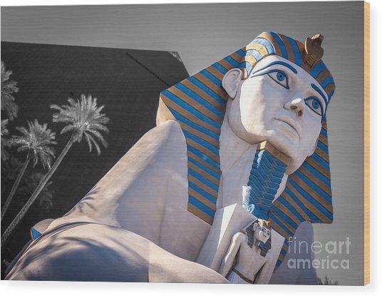 Egypt Or Usa  Wood Print