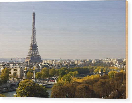 Paris France The Eiffel Tower Wood Print