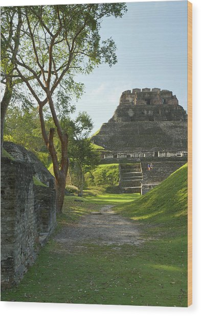 El Castillo Pyramid, Xunantunich Wood Print by William Sutton