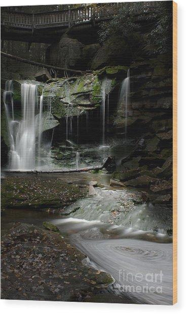 Elakala Falls On The Elakala Trail Wood Print by Dan Friend