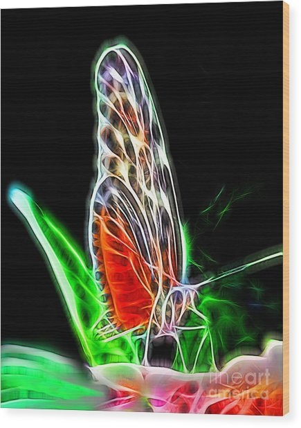 Electric Butterfly Wood Print