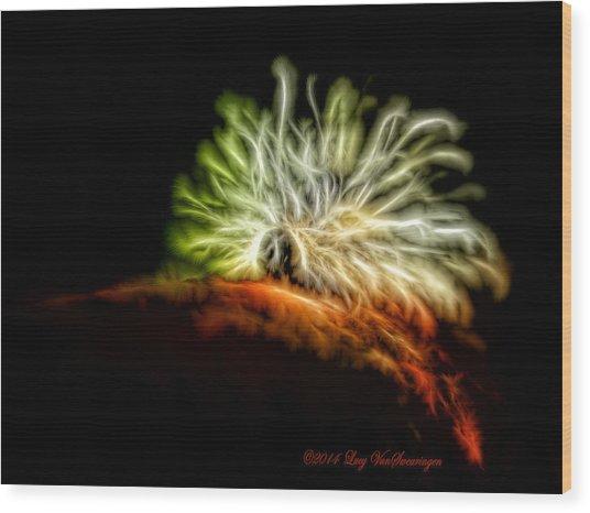 Electric Caterpillar Wood Print