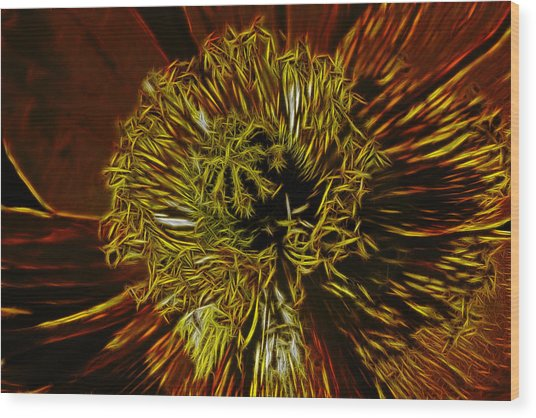 Electric Poppy Wood Print by Photographic Art by Russel Ray Photos