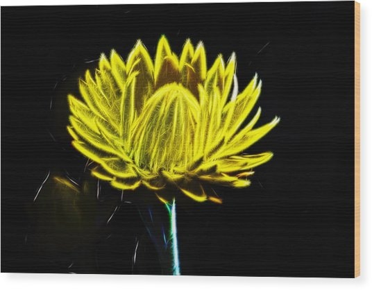 Electric Yellow Wood Print by Photographic Art by Russel Ray Photos