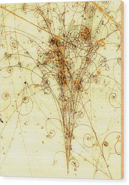 Electron Positron Particle Shower Wood Print