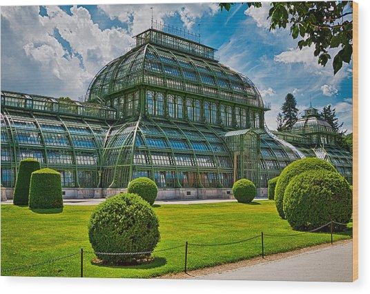 Elegant Greenhouse Wood Print by Viacheslav Savitskiy