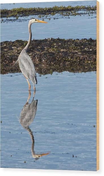 Elegant Heron Wood Print