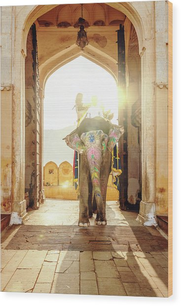 Elephant At Amber Palace Jaipur,india Wood Print