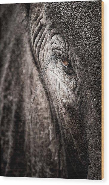 Elephant Eye Verical Wood Print