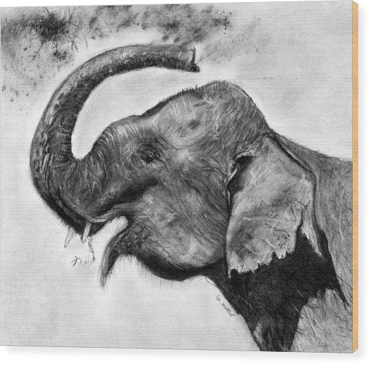 Elephant Play Wood Print
