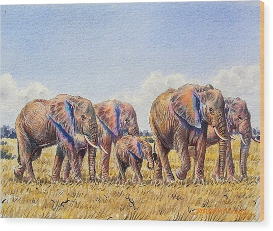 Elephants Walking Wood Print
