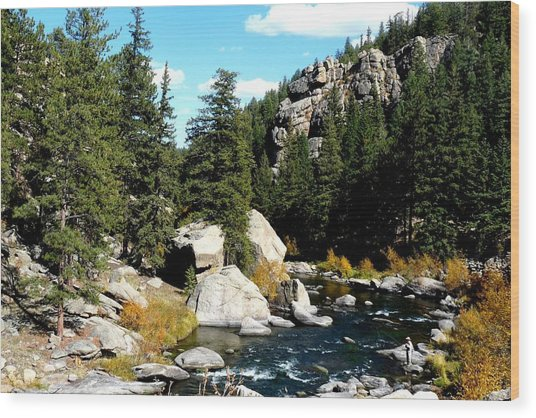 Eleven Mile Canyon Stream Wood Print