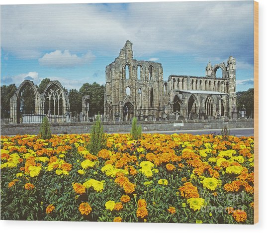 Elgin Cathedral - Scotland Wood Print
