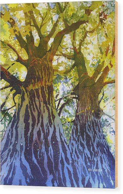 Elizabeth's Canopy Wood Print
