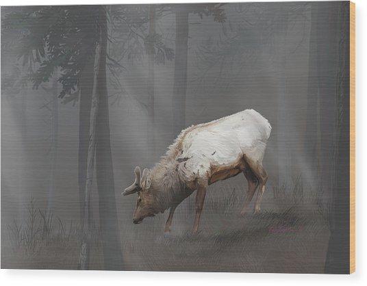 Elk In Velvet Fog Wood Print