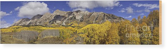 Elk Mountain Panorama Wood Print