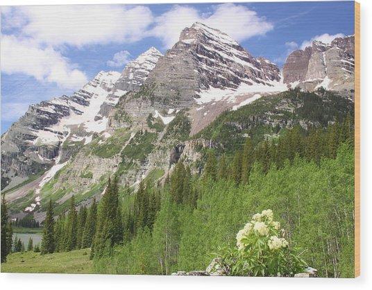 Elk Mountains Wood Print