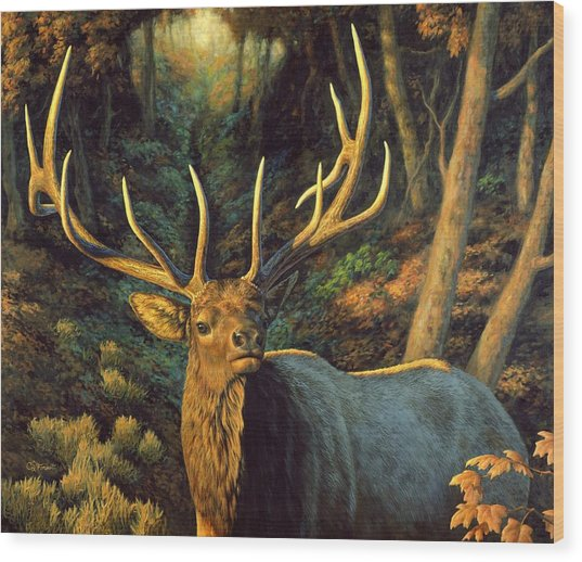 Elk Painting - Autumn Majesty Wood Print