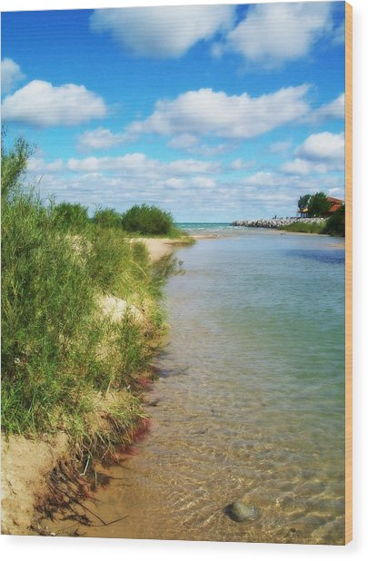 Elk River With Fluffy Clouds Wood Print