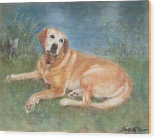 Ella By The St. Joe River Wood Print