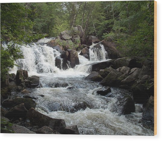 Ellis Falls In Maine Wood Print