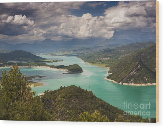 Embalse De Mediano 1 Wood Print by Michael David Murphy