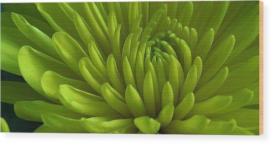 Emerald Dahlia Wood Print