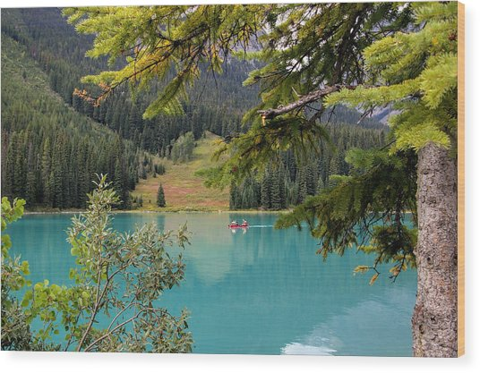 Emerald Lake British Columbia Wood Print