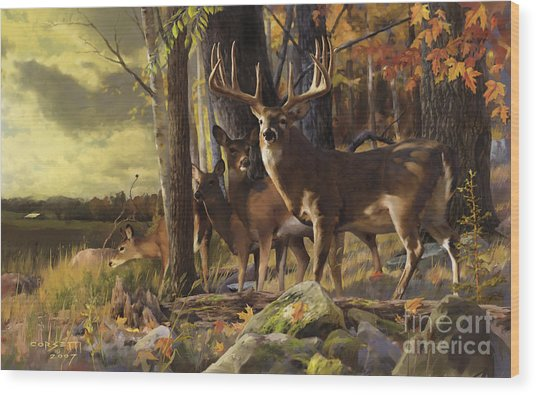 Eminence At The Forest Edge Wood Print