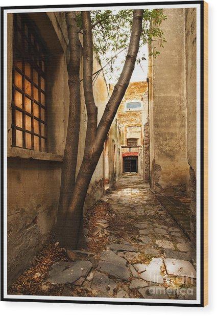 Empty Corridor Wood Print