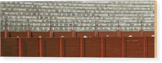 Empty Wood Print by Frank Tschakert