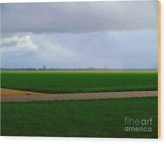 Wood Print featuring the digital art Empty Green by Luc Van de Steeg