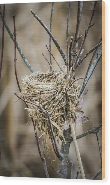 Empty Nest Wood Print