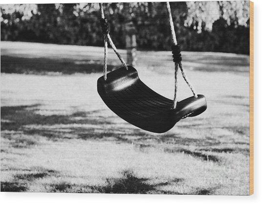 Empty Plastic Swing Swinging In A Garden In The Evening Wood Print by Joe Fox