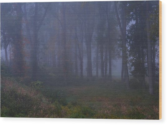 Enchanted Forest Two Wood Print