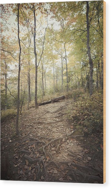 Enchanting Forest Wood Print