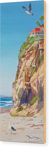 Encinitas Beach Cliffs Wood Print