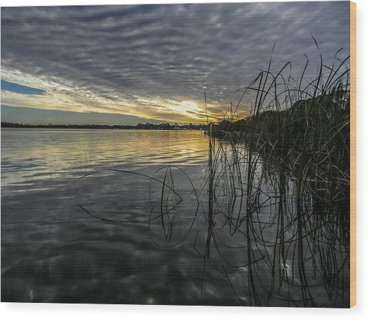 End Of The Day Mirrored Wood Print by Christy Usilton