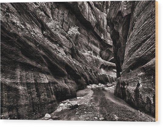 Endless Narrows Wood Print by Juan Carlos Diaz Parra