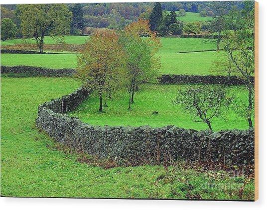 English Autumn Wood Print