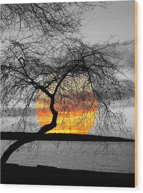 English Bay Sunset Wood Print