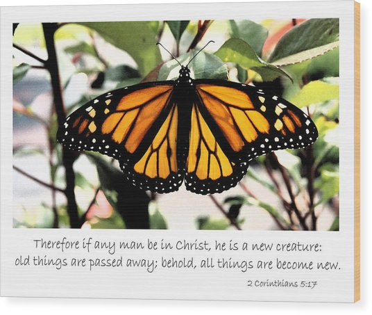 English New Creature In Christ Wood Print