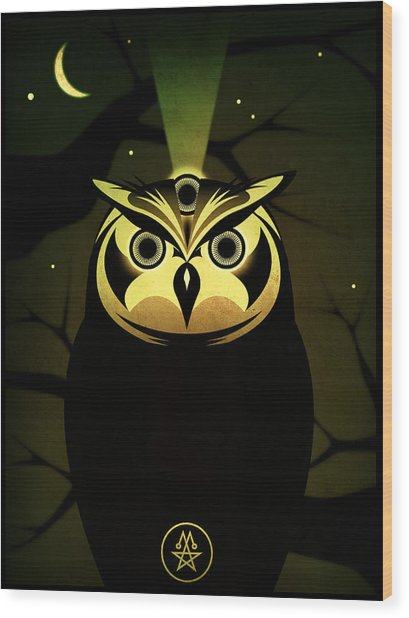 Enlightened Owl Wood Print